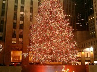 tree lighting NYC